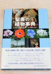 モルデンケ『聖書の植物事典』.JPG